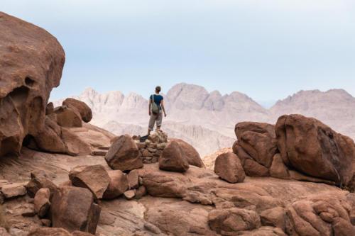 Sinai312