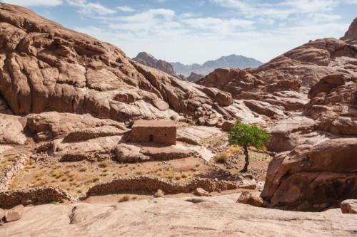 Sinai396