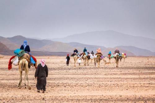 Wüste-751