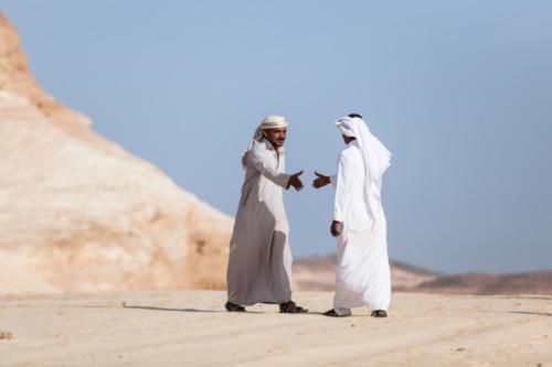 Wüste-658